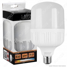 Intereurope Light Lampadina LED E27 30W Bulb T100 - mod. LL-BAYE10030C